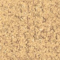 Gạch lát nền Viglacera TS2-606 (60x60cm)