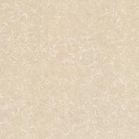 Gạch lát nền Viglacera TS2-612 (60x60cm)