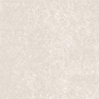 Gạch lát nền Viglacera TS2-617 (60x60cm)