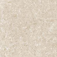 Gạch lát nền Viglacera TS2-621 (60x60cm)